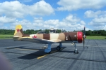 Warbird Planes at Lexington Airport