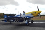 P51 Warbird